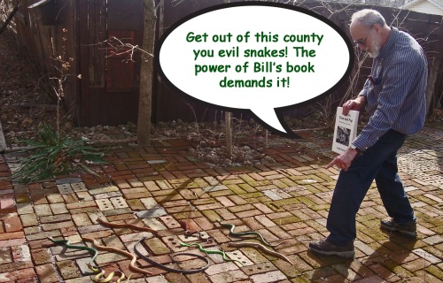 Yes! It is true....Bill Whorrall's book, Goodbye Mom and Pop has the good power to drive out the bad snakes of negativity!  A 10% off sale on all of Bill's books until St. Patrick's Day? Hmmm....Well, O.K.! Order today!